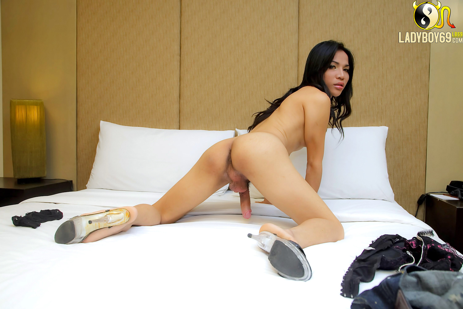 Teen shemale doggie style and ready for your cock tgirl xl